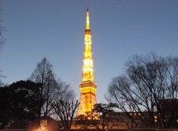 Tokyo Tower (2)