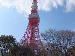 Tokyo Tower (3)